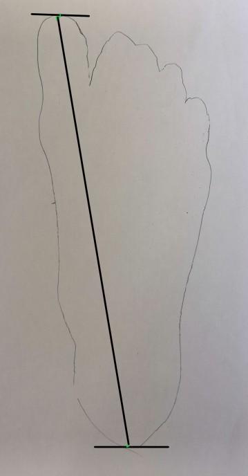 contour du pied mesure longueur